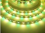24V RGB+WW 14,4W vnitřní LED pásek záruka 3 roky