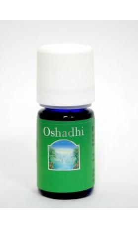 Oshadhi Večerní pohoda, synergická směs