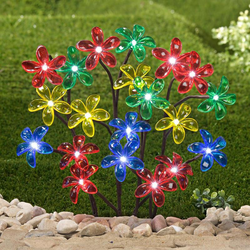 Solárny kvitnúci ker